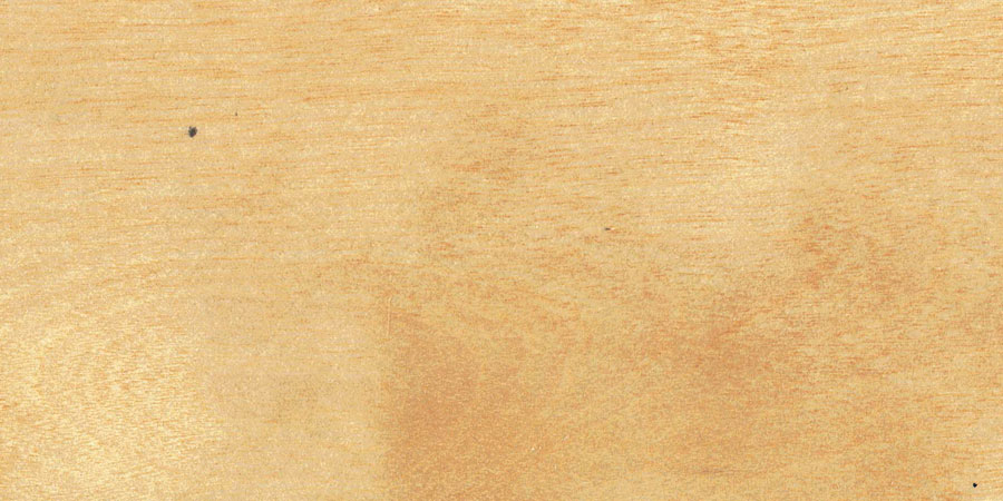バーチの無垢フローリング × No.022「ビーチ」