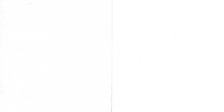 パインの無垢フローリング × No.3188「白色」