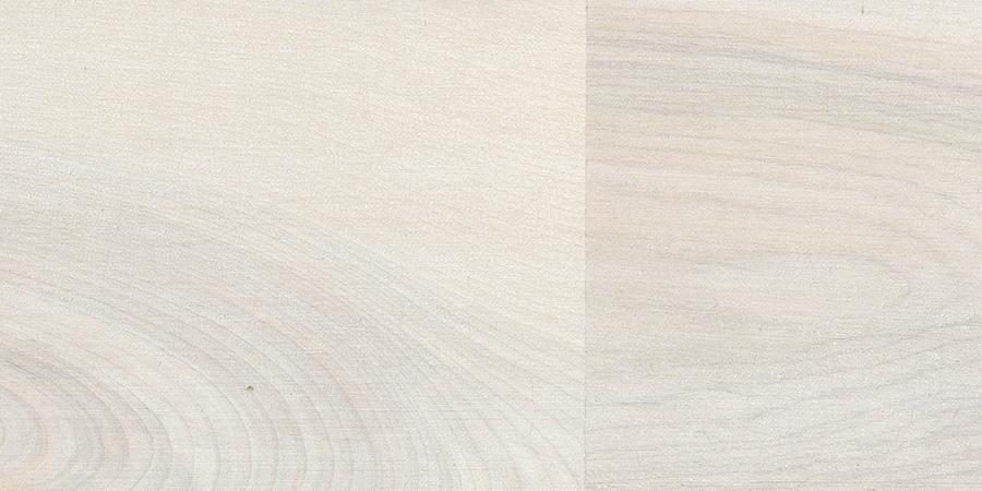 バーチの無垢フローリング × F-61 「ホワイト」